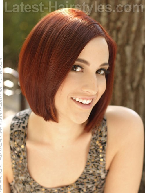 06sleek-short-bob-hairstyle[1]